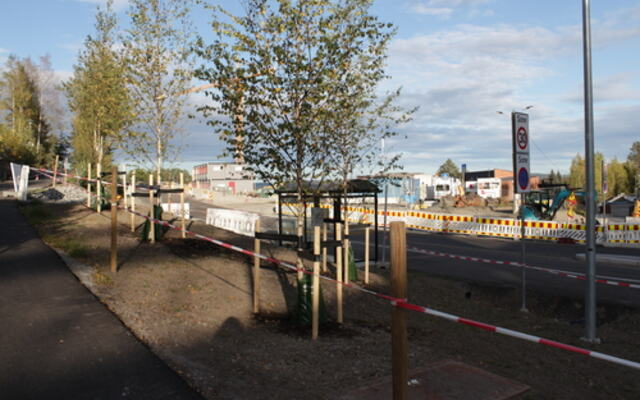 Beplantning krysset Bjørnholthagan Fjerdingby sentrum
