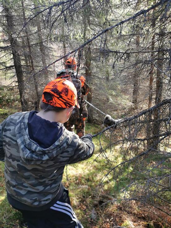 På jakt @Anka Hansen